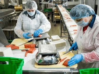 Упаковка мороженых морепродуктов MARINUS